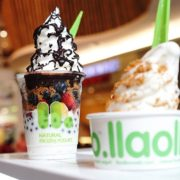 Is froyo healthy?
