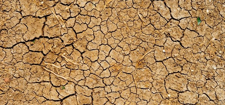We are the reason for drought, and it's getting worse