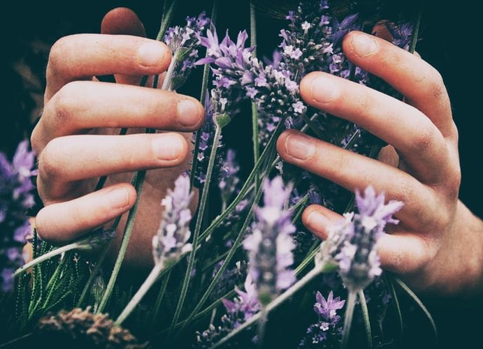 Start aromatherapy right now and improve your life