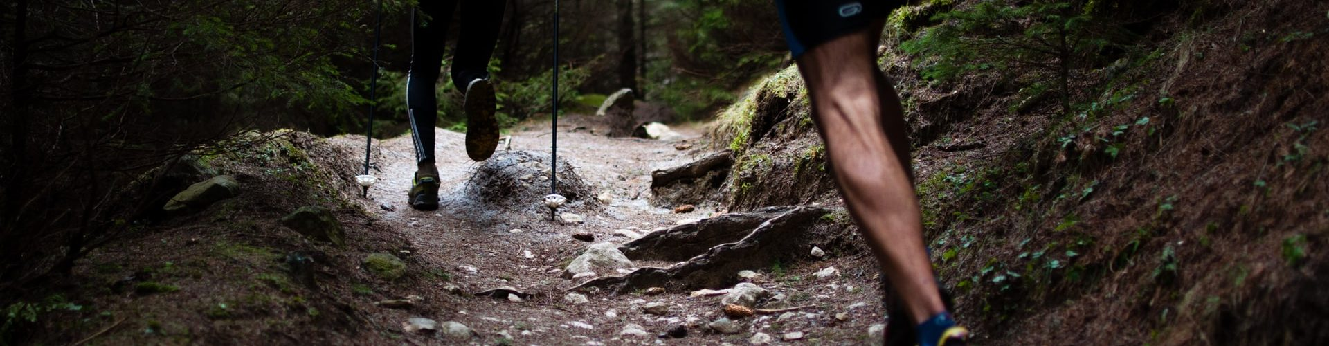 Why You Should Try Trail Running